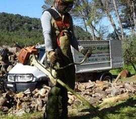 Sebeflo Elagage Abattage Débroussaillement à Aubagne Roquevaire Lambesc